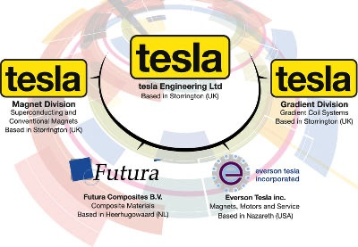 Tesla Engineering Group Organisation Diagram
